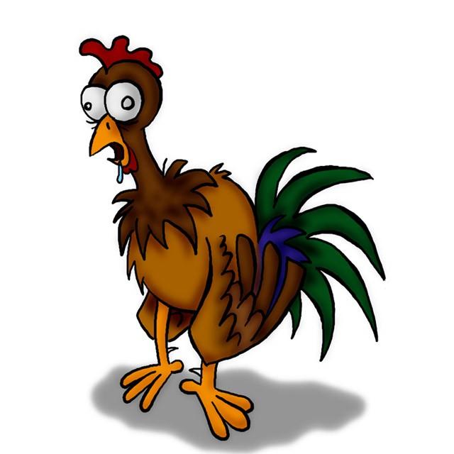 Risultati immagini per pollo spennato