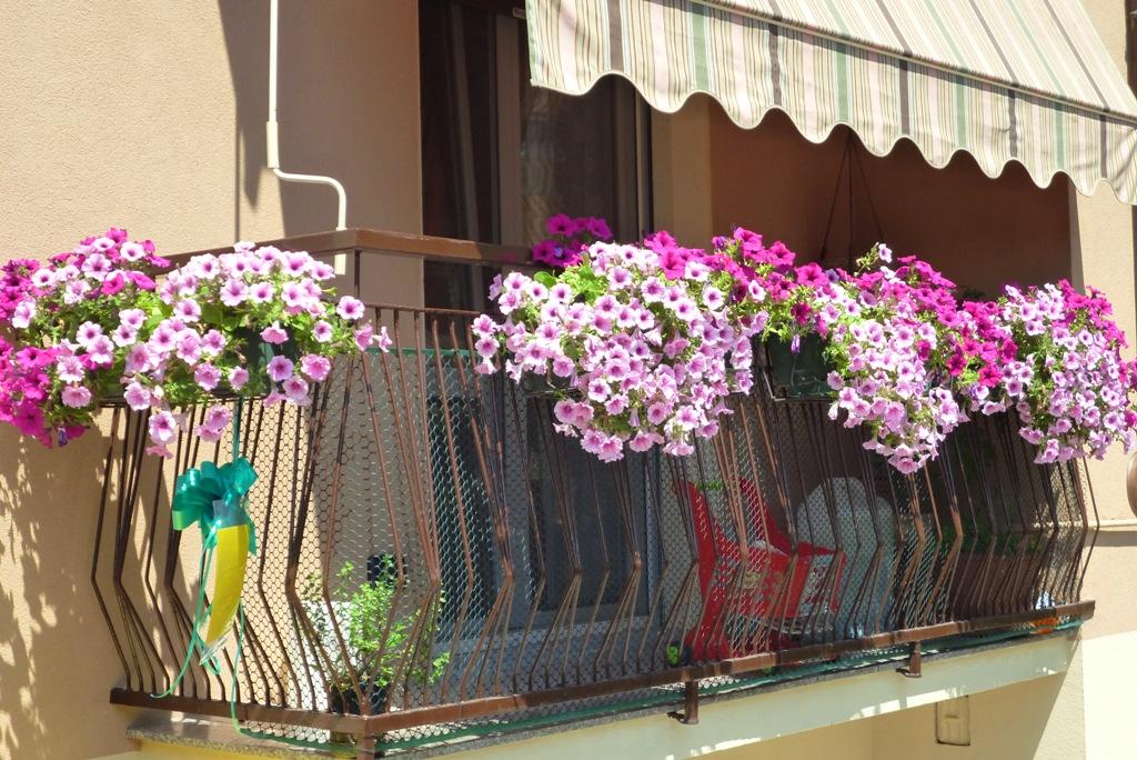 Acri: Balconi fioriti edizione 2017